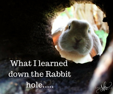 What I learned down the Rabbit hole.....